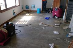Before cat room